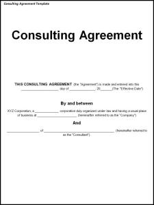 Consultancy Agreement- Terms and Conditions, Commitments of the Parties
