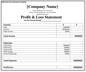 The Profit and Loss Statement - An Overview